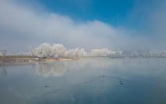 lake Zajarki (88) (Vlado Ferenčić) Tags: lakes foggymorning foggy mistymorning frost lakezajarki zajarki zaprešić hrvatska croatia nikkor173528 nikond600 sky cloudy clouds