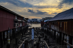 Penang Clan jetty (Dingo photography) Tags: penang georgetown clan jetty clanjetty heritage site old destroyed sky sun sunset colourful nikon dx d5100 1855mm nikkor houses travel travelphotography photography malaysianphotographers freelancephotographer photographer malaysia fotografer fotografi pillars repairs cemented dramatic zink