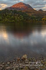 Clair Dawn (2) (Shuggie!!) Tags: dawn forest hdr highlands hills landscape morninglight mountains pine scotland shoreline torridon trees westerross zenfolio karl williams karlwilliams