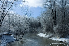 Picture 058 (imwearingcons) Tags: winter ice nature michigan winterscape winterlandscape icdstorm midmichigan