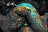 (hurleygurley) Tags: california b sculpture woman color stone photomanipulation interestingness curves goddess explore rgb hg barbarasgarden lagunitas hurleygurley westmarin utatabluegreen elisabethfeldman faveset