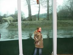 2006_0221_131019AA (Petra65) Tags: nederland rhenen ouwehands dierenpark