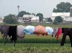 Clothes Line V (Shilashon) Tags: county blue red black green field socks shirt barn grey pants pennsylvania barns amish apron clothes shirts lancaster clotheslines aprons
