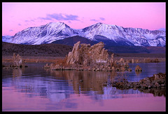 Pink Morning, Mono Lake (Buck Forester) Tags: california pink lake mountains nature sunrise mono bravo fuji view quality lakes scenic sierra velvia sierras monolake sierranevada tufa velvia50 tufas southtufa tufatowers pinkmorning sierravisions