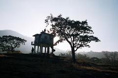Indira Gandhi Wildlife Sanctuary, South India