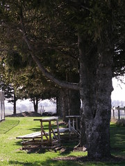 waiting (enilanerda) Tags: trees playground bench shade benches washingtontownship theflickys