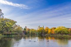 _DSC3635-HDR (purin_cess) Tags: centralpark 2016 autumn 11月 十一月 秋 中央公園 紐約 ny newyork