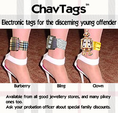 Chav Tags (Jo Angel) Tags: archive joannasdiary blog stuff images photoshop jokes silly wwwjoannasdiarycouk joanna humour chavvy chav tag offender bling burberry