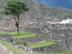 Machu Picchu; panorama 12