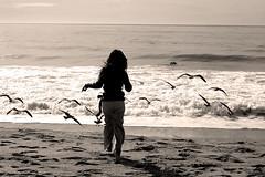 Anna Chasing Birds - by Vu Bui