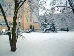 051226_1 (maxie-online) Tags: marzahn berlin whereilive snow