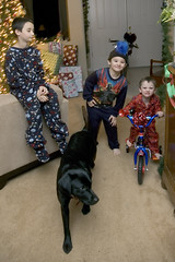 Christmas Morning (ssklar) Tags: christmas morning bike bicycle oliver nathan thomas riding buffy christmasday2005 ssklar