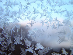 Frost on the window of my grandparents house (roddh) Tags: life family pink blue trees winter light sunset white black flower ice home window nature glass birds topv111 mrjackfrost clouds dark landscape sadness flying interestingness topv555 topv333 bravo heaven vermont frost pattern 500v20f natural crystal sony topv1111 joy feather 100v10f structure east photograph views 100th pane topf100 topf250 lightblue f707 6667 iceflowers frostfeathers roddh abigfave 8001v301f21nov2006 world100f