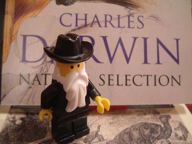 Darwin Lego