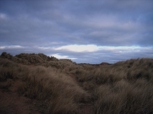 Dunes at Balmedie. Aberdeen, Scotland. Photo by doublebug.