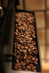 Beans (GoSo) Tags: 15fav coffee topv111 canon eos 350d beans dof bokeh machine espresso ef50mmf18ii miscset goso
