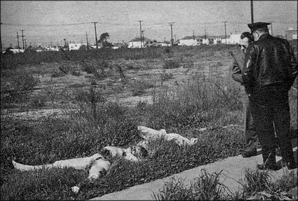Real Crime Scene Murder http://eyehemorrhage.blogspot.com/2008/08/true-crime-black-dahlia.html