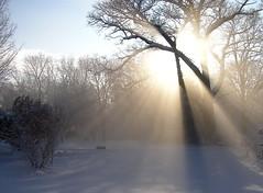 Boxborough sunrise (Muffet) Tags: morning light sun mist home rural ilovenature bravo glow interestingness1 calming rays textbook boxborough moocard photodotocontest1 utata:project=upfaves
