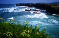 119 (sul gm) Tags: blue sea espaa verde green beach topf25 water azul tag3 taggedout mar spain topf50 topv555 topv333 agua tag2 tag1 500v20f topv999 playa galicia 50100fav topv777 lugo ascatedrais barreiros 100vistas interestingness20 i500 explore25jan06 exc3 exc2 buena1 230countriesspain exc1 exce5 lmff exce4 lmff1 lmff2 50club salgm ltytr1 thepinnaclehof tphofweek39