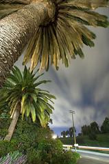 (Toby Keller / Burnblue) Tags: longexposure toby sky santabarbara night clouds palms landscape keller d70 top20night tobykeller 1118mm burnblue