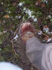 Mud Clods