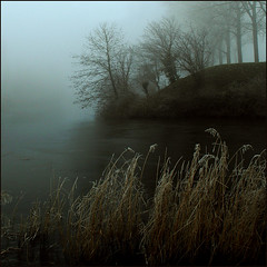 THE FOG (ESOX LUCIUS) Tags: blue trees winter mist ice me fog ilovenature bravo taco hellevoetsluis ringmoat i500