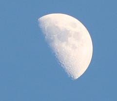 First Quarter - 02-05-06 (wanderingnome) Tags: california moon 510fav explore ventura venturacounty waxing firstquarter theworldthroughmyeyes thebiggestgroup ©wanderingnomez 214explorepage113006