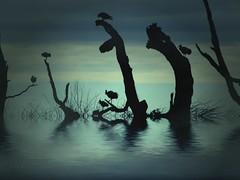 Bird Silhouettes - by spitfirelas