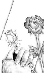 valentines 2006 (abnerzarka) Tags: roses portrait art rose pencil sketch hand heart drawing 3b figure valentines create draw 4h ee hold hb 2b 3h 5b 4b 6b 2h 5h