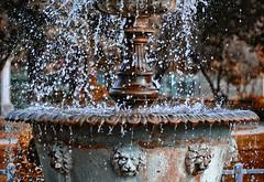 Lionheart (JEMiguel007) Tags: water fountain lion freeze lionheart