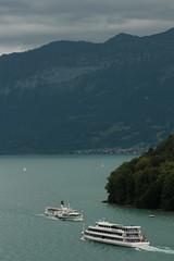 Begegnung vom MS Berner Oberland und Dampfschiff DS Blemlisalp in der Bucht von Spiez im Berner Oberland im Kanton Bern der Schweiz (chrchr_75) Tags: chriguhurnibluemailch christoph hurni schweiz suisse switzerland svizzera suissa swiss kantonbern chrchr chrchr75 chrigu chriguhurni juli 2015 hurni150725 schiff kursschiff schiffahrt kursschiffahrt passagierschiffahrt passagierschiff skib ship alus bateau    schip fartyg barco dampfschiff schaufelraddampfer salondampfer dampfer vapor stoomboot steamer vapeur ngaren dampfschiffblemlisalp blemlisalp ds escher wyss 1906 dampfmaschine blemlere juli2015 albumzzz201507juli albumregionthunhochformat thunhochformat hochformat