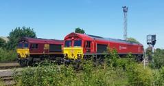 66125 66185 (DBS 60100) Tags: gm shed class66 ews knottingley dbschenker