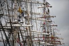 20-08-2006 12-15-32 tall ship anvers 19 au 22-08-2006 0109 mod et rt (vincent.lempereur) Tags: tallship voilier ship bateau boat voile mer