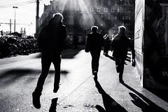 Train won't wait (Ivan Rigamonti) Tags: bw bnw blackandwhite monochrome switzerland europe zurich urban urbanexploration street streetphotography people public train tram man running men outdoors backlight zurichmainstation ivanrigamonti