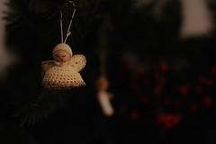 merry christmas in a world full of pain (Anna M. Sky) Tags: christmas pain death war cruel world love peace dof photography