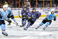 "Missouri Mavericks vs. Alaska Aces, December 16, 2016, Silverstein Eye Centers Arena, Independence, Missouri.  Photo: John Howe / Howe Creative Photography • <a style=""font-size:0.8em;"" href=""http://www.flickr.com/photos/134016632@N02/31607639842/"" target=""_blank"">View on Flickr</a>"