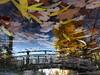 Leaf the Bridge (andressolo) Tags: leaves london clapton pond hackney city water bridge puente autumn reflections reflection reflect reflejo reflejos reflected agua distortions distorted distortion