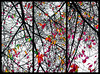 Trinity (Patricia Colleen) Tags: tryptich autumn branches niksoftware