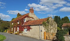 Summer Colours (Paul Thackray) Tags: yorkshire northyorkshiremoorsnationalpark northyorkshire ryedale village 2016