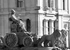 La Diosa (Uno de Melilla) Tags: madrid cariátides diosa cibeles edificio grassy plaza spain españa pwmelilla