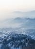 Polar cold weather (Dejan Hudoletnjak) Tags: winter cold landscape polar frost freezing freeze forest nature
