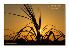 Golden Sunset (RagbagPhotography) Tags: sunset golden yellow orange mar menor murcia spain frame with border drop shadow costa calida gold