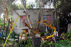 Crowded Composition 2 (Art By Pem Photography: Tao Of The Wandering Eye) Tags: canon canoneosrebelsl1 eos sl1 outdoor clutter yard house trees junk usa