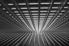 KroM. (Warmoezenier) Tags: architectuur belgie blanco building diagonaal diagonal gebouw krom liege lines luik modern negro shadow shaduw sombra station tortional tortuoso trainstation treinstation wit zwart
