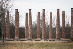 Ruins [Explored] (derekbruff) Tags: alabama florence forksofcyrpress columns plantation ruins