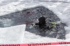 IMG_4708 (Scott Martin Calgary) Tags: improvementdistrictno9 alberta canada ca lakeminnewanka scuba diving