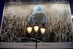 Photographié avec l'iPhone6 (jmvnoos in Paris) Tags: paris france ads advertising pub nikon streetlamp streetlamps ad lamppost pubs publicité lampadaire lampposts lampadaires publicités 10faves d700 photographié jmvnoos iphone6
