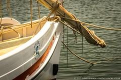 Bateau dans le port
