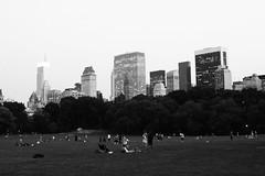 New York - 2013 (Gor Studio) Tags: usa newyork brooklyn manhattan eua novaiorque