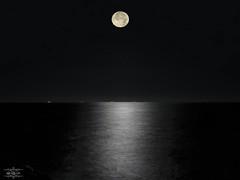 Catalina por la madrugá... (Lola Cortés Neva) Tags: blanco la catalina y negro lola luna bn por reflejos neva madrugá cortés lolacortésneva